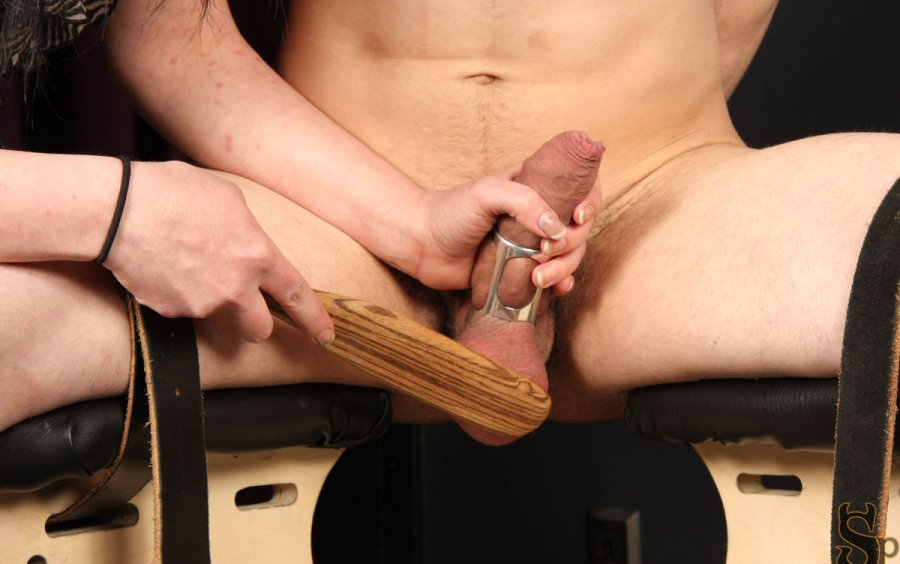 Domination tranny tube